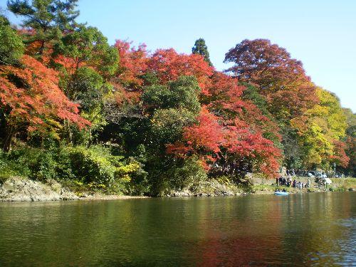 kyoto-okuarasiyama2010-1.jpg